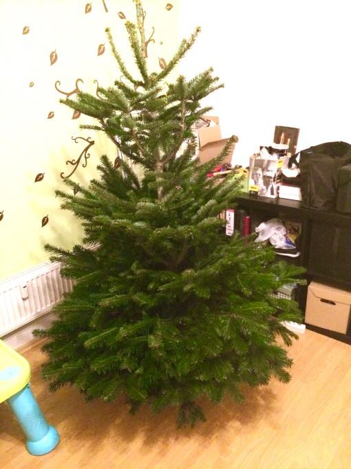 Stromeček čeká na ozdobení
